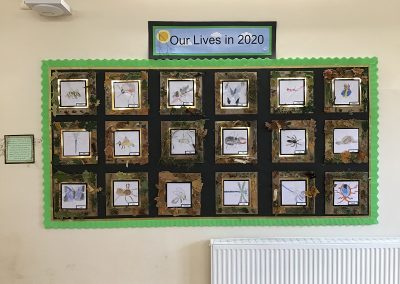Class 3 - Watercolour Insects