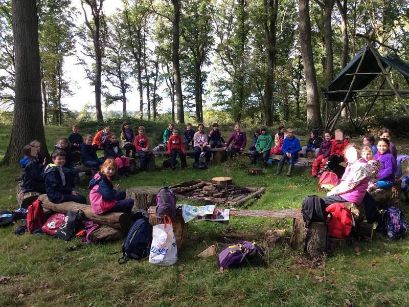 Whole School Forest School
